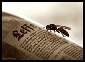 Wasp by ScorpionEntity