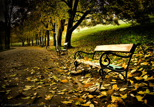 Remembering Autumn