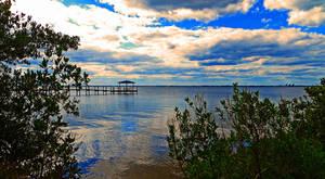A Sunny Florida Day - 5 by MajorTommy