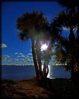 Moon Over My Beach pt2 by MajorTommy