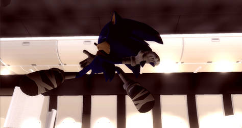 Proud and sassy Sonic