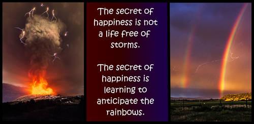 meme Anticipate Rainbows