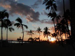 Waikiki Sunset 2001