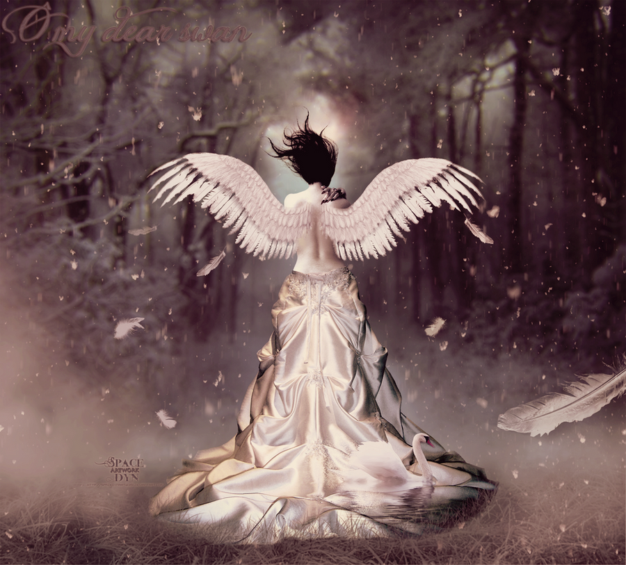 O my Dear Swan by Dyn by SpaceDynArtwork