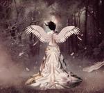 O my Dear Swan by Dyn