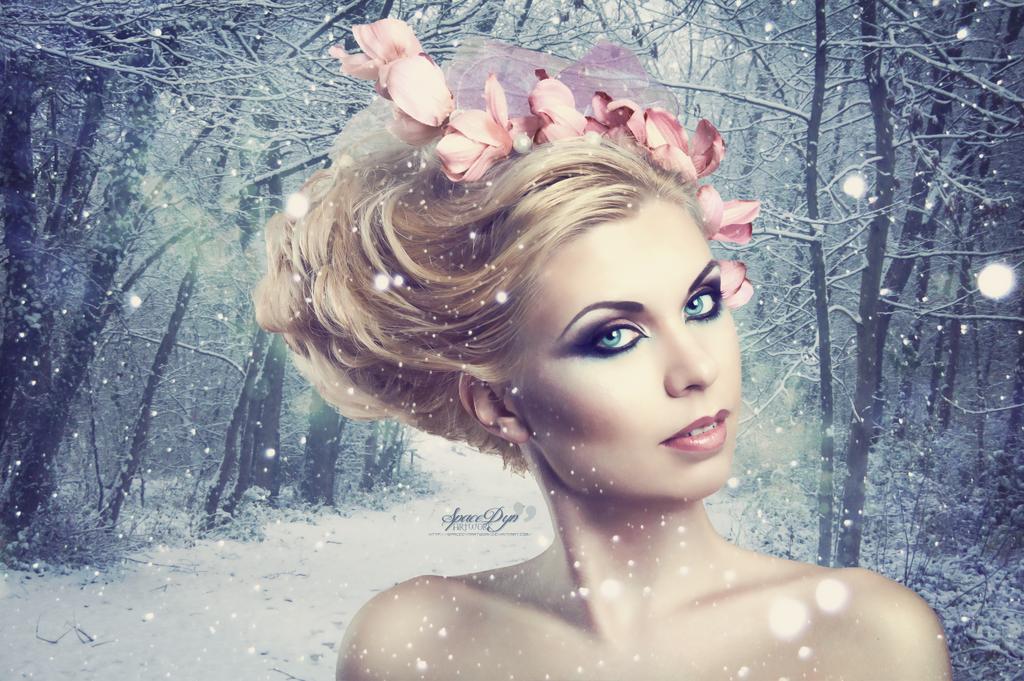 http://fc05.deviantart.net/fs70/i/2013/343/9/d/winter_queen_by_spacedynartwork-d6xax62.png