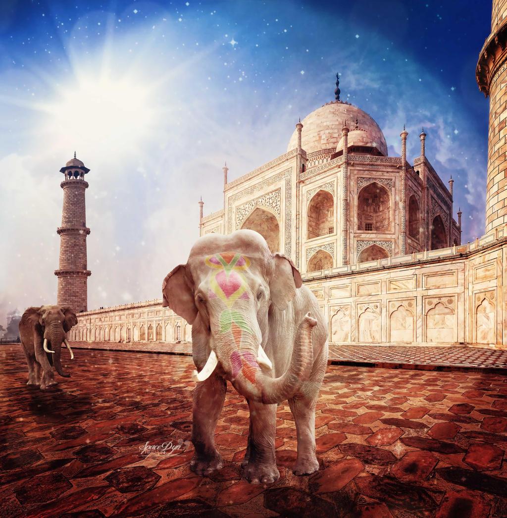 http://fc01.deviantart.net/fs71/i/2014/009/2/9/king_of_india_by_spacedynartwork-d71jdqy.jpg