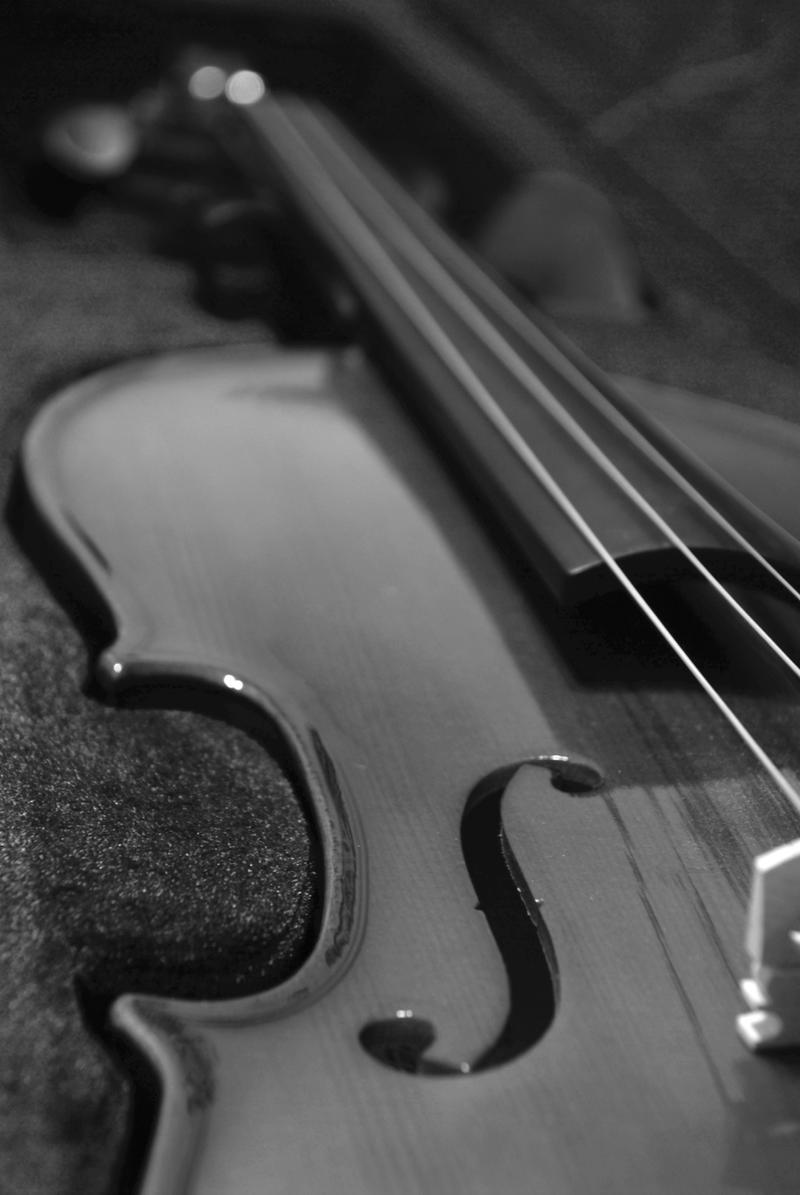 AestheticIndulgence Violin In Black And White By