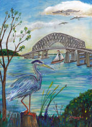 Blue heron by Key bridge
