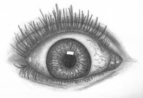 Eye by Gletbuub