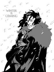 jon snow by MrParanoidXXX