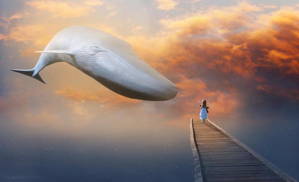 Flying Whale by MonardezMelo