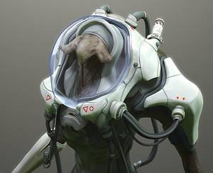 Diver_closeup