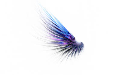 Feathered wing Fractal Stock