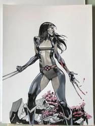 X-23 commission