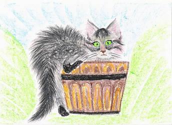 Cat by my mum- 2 by AmberyFlower