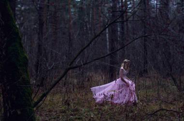 The Lost Princess 5