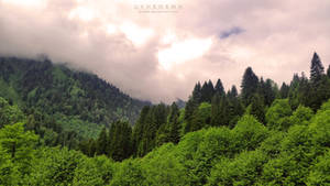 green mountain by quwen