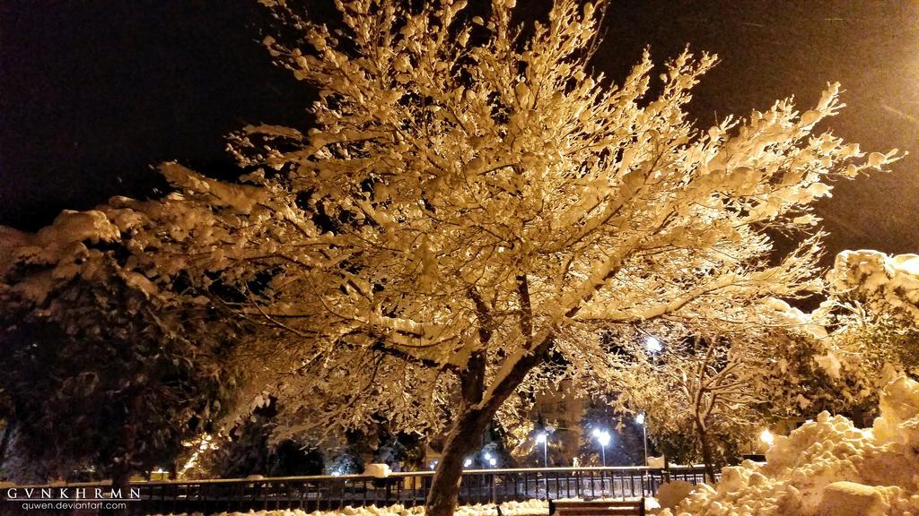 white tree by quwen