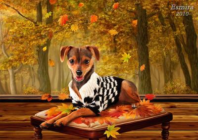 Autumn style by Esmira
