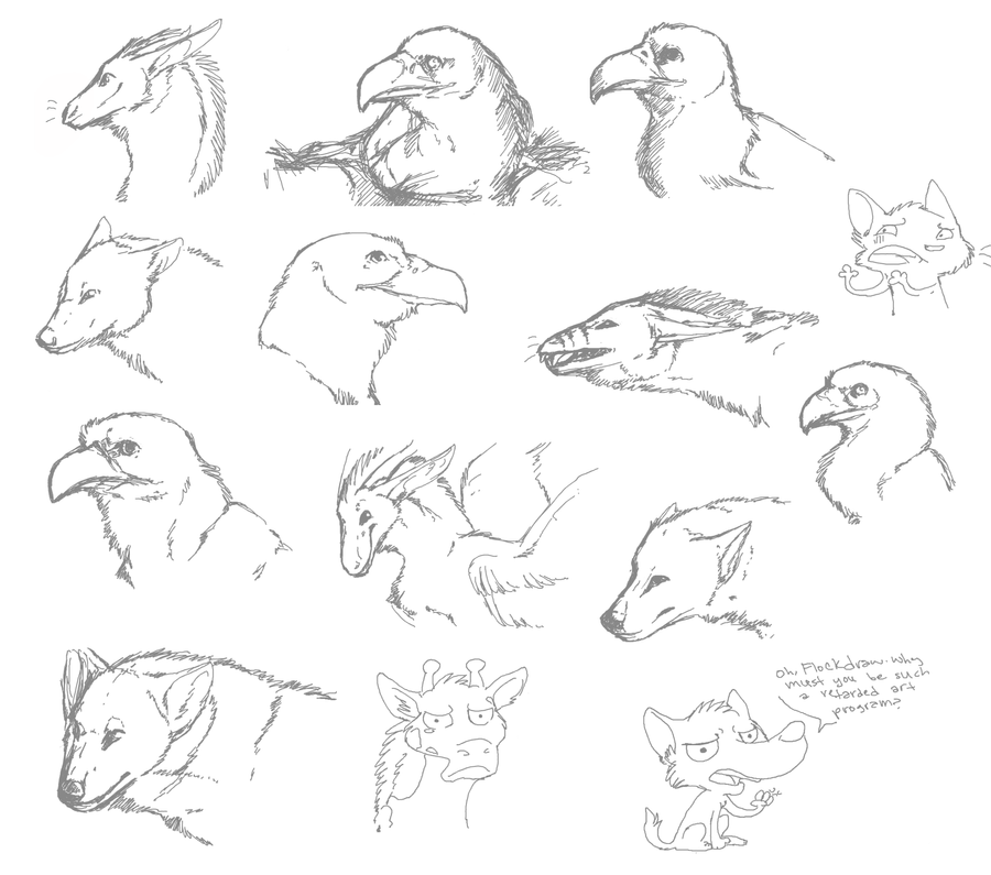 how to draw a flock
