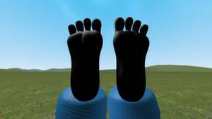 Goofy's Feet in the Air
