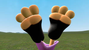 Nicole's Feet in the Air
