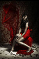 Woman in Red Dress by L2design