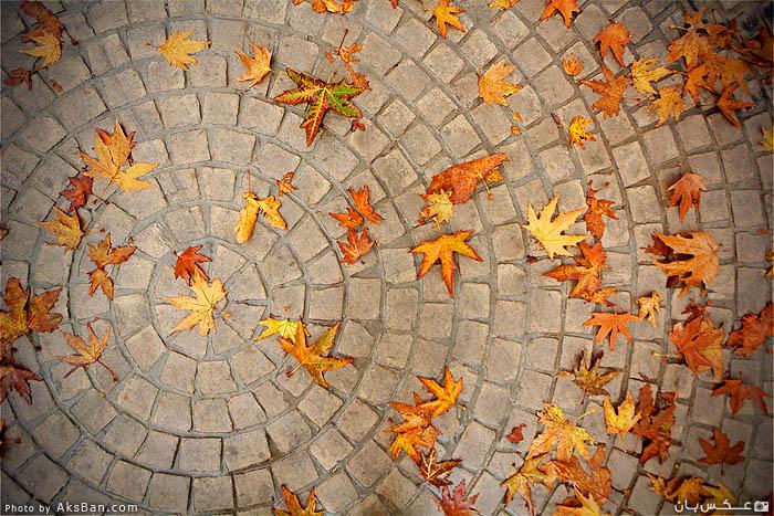 sidewalk Kilim by AksBan