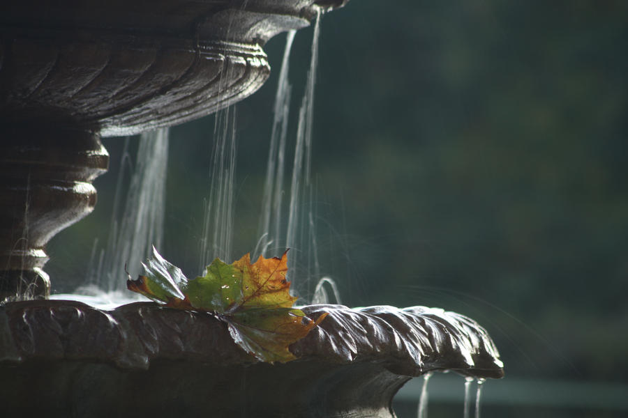Fall by Tinkrbel2469