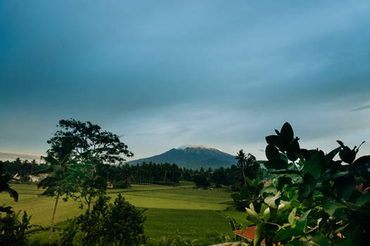 sago mountain