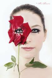 Petals by Miss-Avalancha