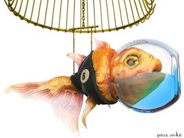 Fish Cage by belgoran