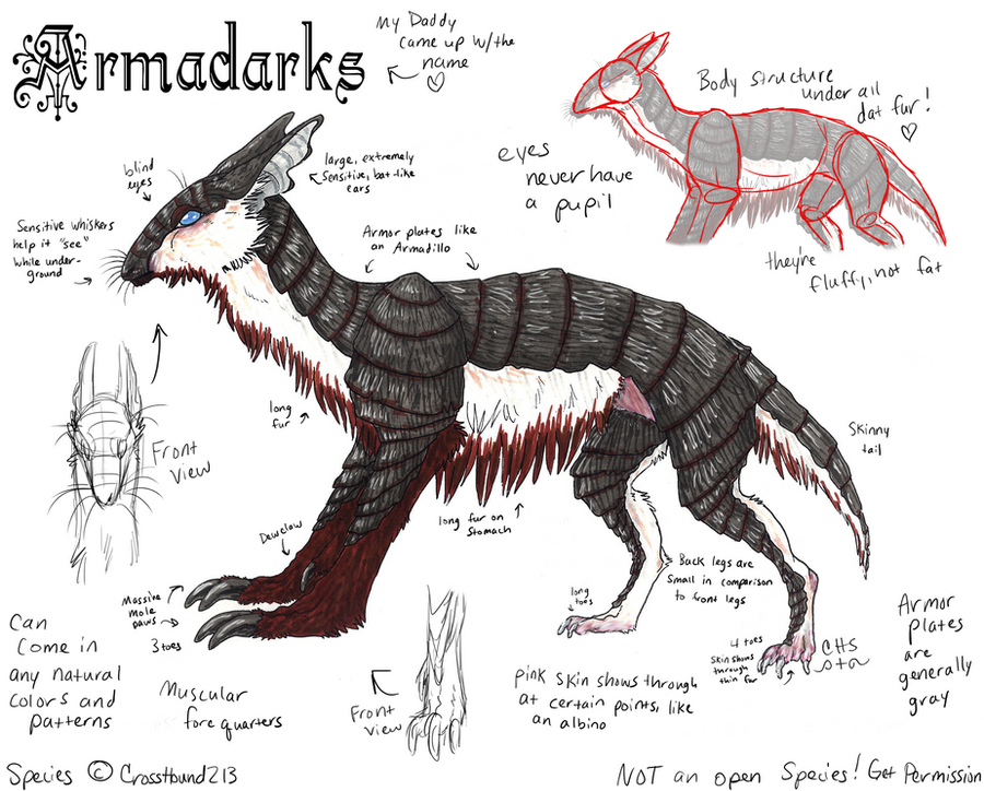 Armadark Species Ref by CrossHound213