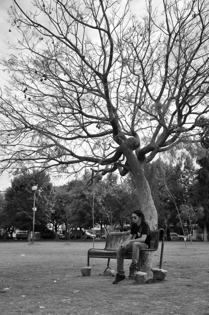 black and white park by Cele-Cam