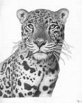 Moonlit Jaguar - still a WIP by mikebontoft