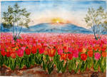 Tulips landscape by Shashikanta
