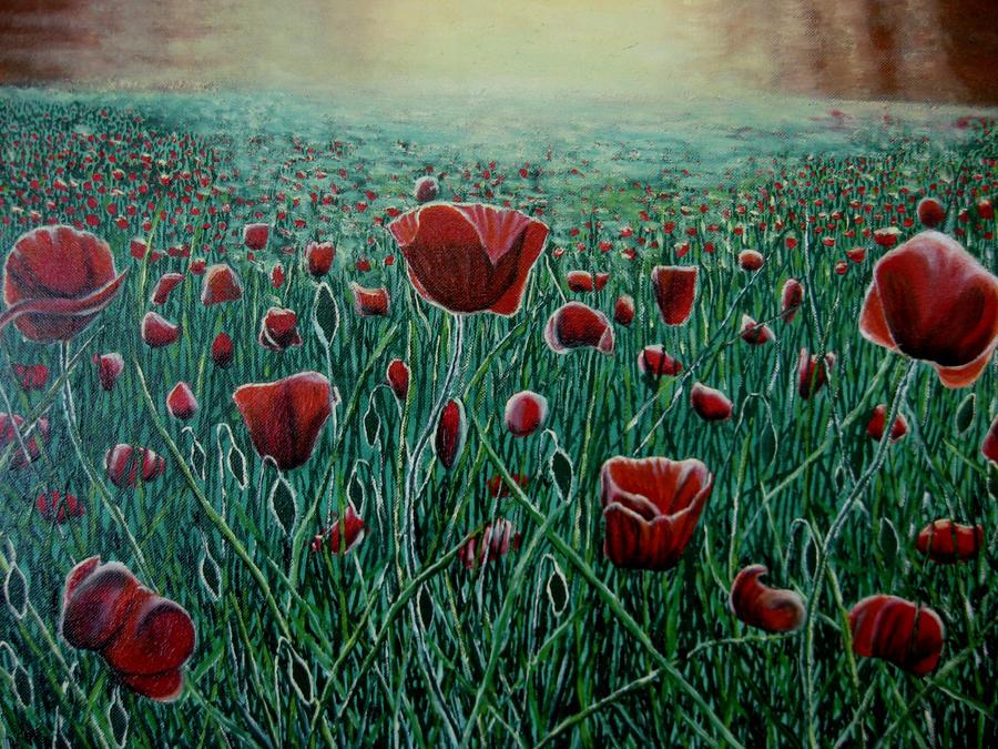 Poppy Sunlight by azzadawn