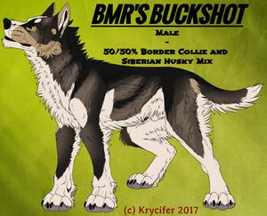 BMR's Buckshot