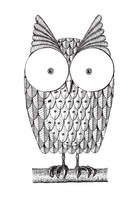 Owl by harryett