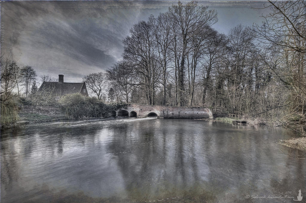Millpond at Lyng 2 by Salemik
