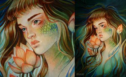 Mermaid Lotus by Asano-nee