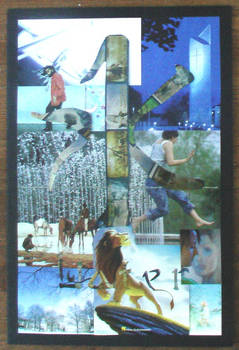 Chinese Collage- Water