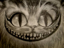 The Cheshire Cat by katiesparrow1