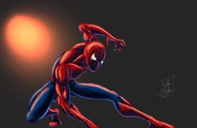 Spider-Man by wertmanwilliam