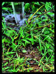 Tiny Jungle