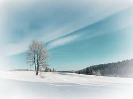 On A Winter's Day by VBmonkey26