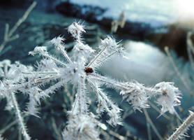 Frosty 2 by VBmonkey26