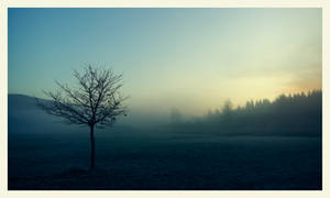 Hazy Shade Of Winter by VBmonkey26