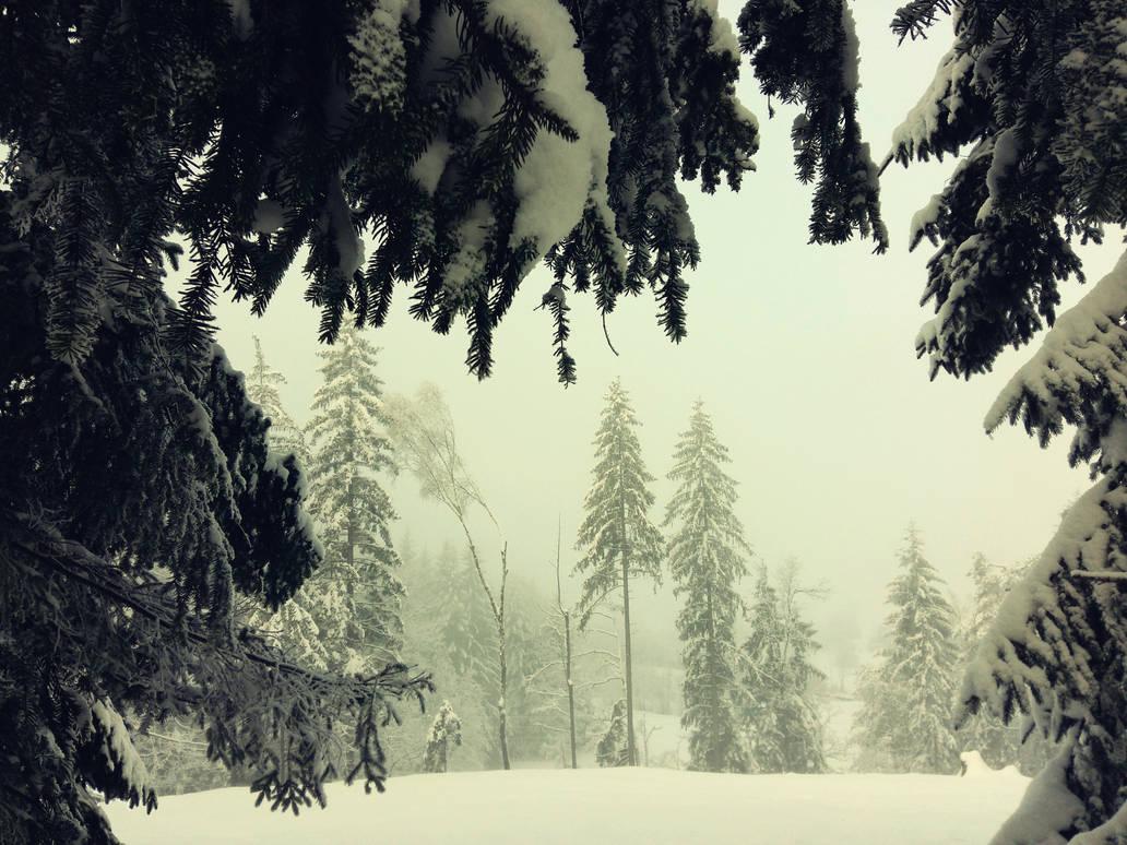 Hard Winter by VBmonkey26